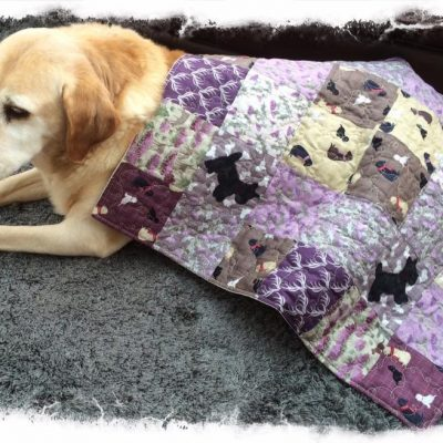 Sandys blanket